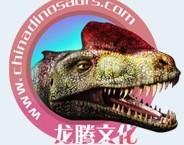 Zigong City Dionosaur Landscape & Art Co.,Ltd/Zigong City Dragon Cultures & arts Co.,Ltd