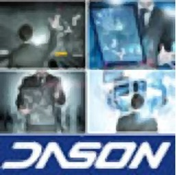 Dason (Xiamen) Holding Co., Ltd.