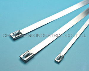 BCT Stainless Steel Cable Ties