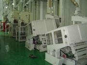 100TPD 200TPD Complete Rice Mill Plant