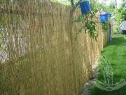 Reed Fence, Reed Screen, Reed Mat