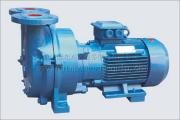 Liquid Ring Type Vacuum Pump