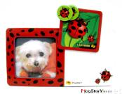 Magnetic Memo Album and Board (Ladybug)