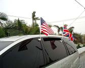 11 x 17 Inch Car Flags with Plastic Pole and Clip