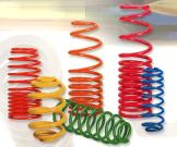Coil Springs (Sport Type)
