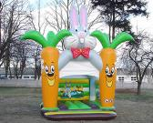 Inflatable Bouncer, Castle, Slide, Funcity, Sports