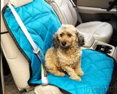 Car Seat Cover for Pet in Car