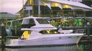 Flybridge Cruisers 50 Foot-54 Foot