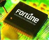 Fortune Mixed Signal Micro Processor