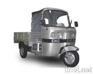 Tricycle, Carrier