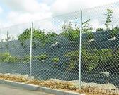 Chain Link Fence/Fencing Wire Mesh