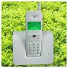 GSM fixed wireless telephone