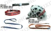 dog collar&leash