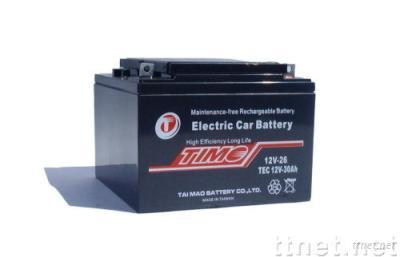 TEC12V30Ah.ELECTRIC CAR BATTERY. more 30% life. test available.