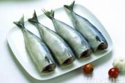 Mackerel HGT