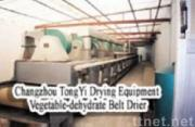 DWT Vegetable-dehydrated Belt Drier