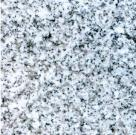 G603 Padang Grey Granite Royal White Granite