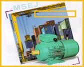 MSEJ Series Three Phase Squirrel-cage Induction Motor