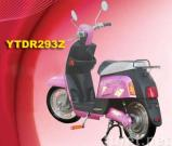 electric bike-YTDR293Z
