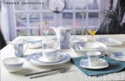 Bone china Dinnerware/Dinner set/Tableware,chinware