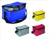 Cooler bag(CB-31)