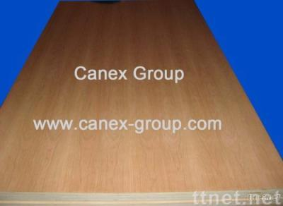 UV Lacquered / UV Pre-finished Plywood