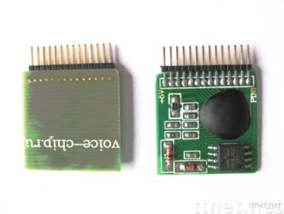 Integrated Circuit-Toy IC Modules
