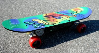 electric skateboard/scooter