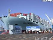Looking Agency Freight Forwarders Shipping Line
