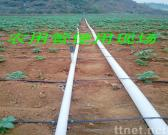 PVC-U Pipes for Agricultural Irrigation