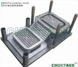 Special Foil Container Mould