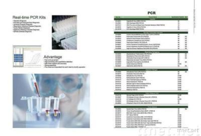 Real-Time PCR Kits