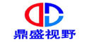 Guangzhou Dingshengshiye Electronic Technology Co., Ltd