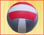 Volleyball With PU Cover
