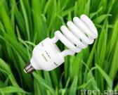 CFL Energy Saving Light